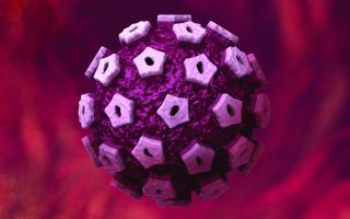 Последствия и лечение папилломавируса