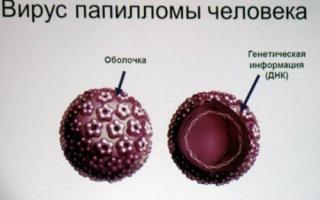 Как не заразиться вирусом папилломы человека?
