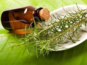 Масло чайного дерева для лечения бородавок