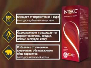 Преимущества intoxic
