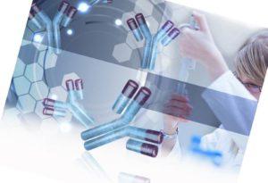 Моноклональные антитела